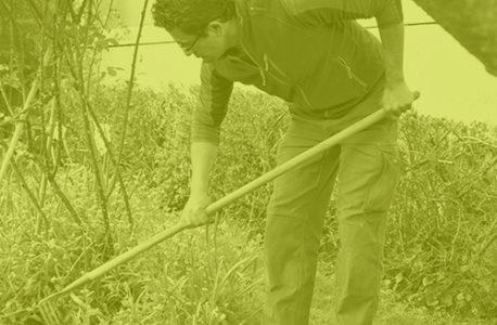 Jardinage & petit bricolage